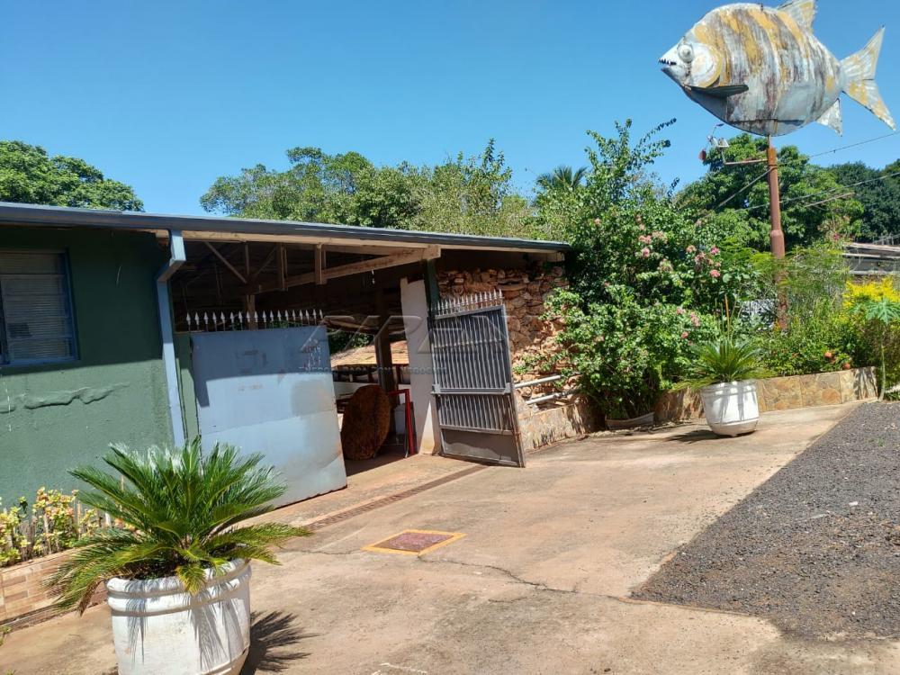 Comprar Rural / Chácara em Jardinópolis R$ 2.700.000,00 - Foto 4