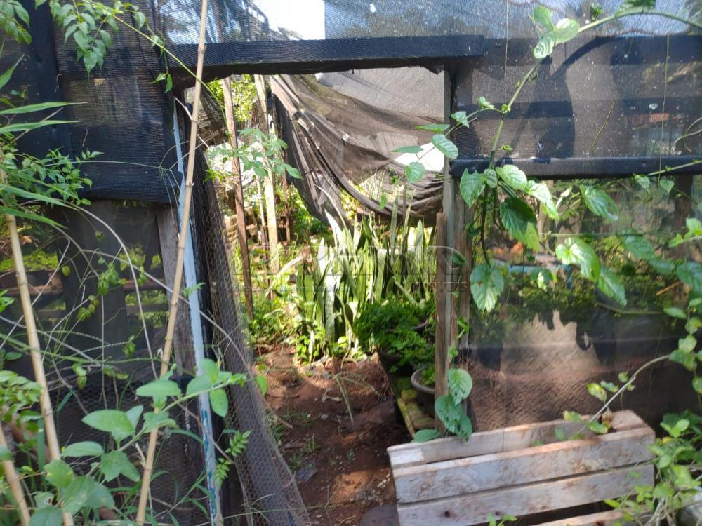 Comprar Rural / Chácara em Jardinópolis R$ 2.700.000,00 - Foto 5