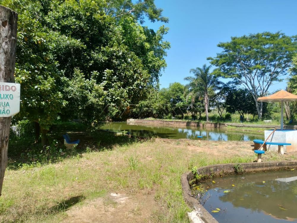 Comprar Rural / Chácara em Jardinópolis R$ 2.700.000,00 - Foto 10
