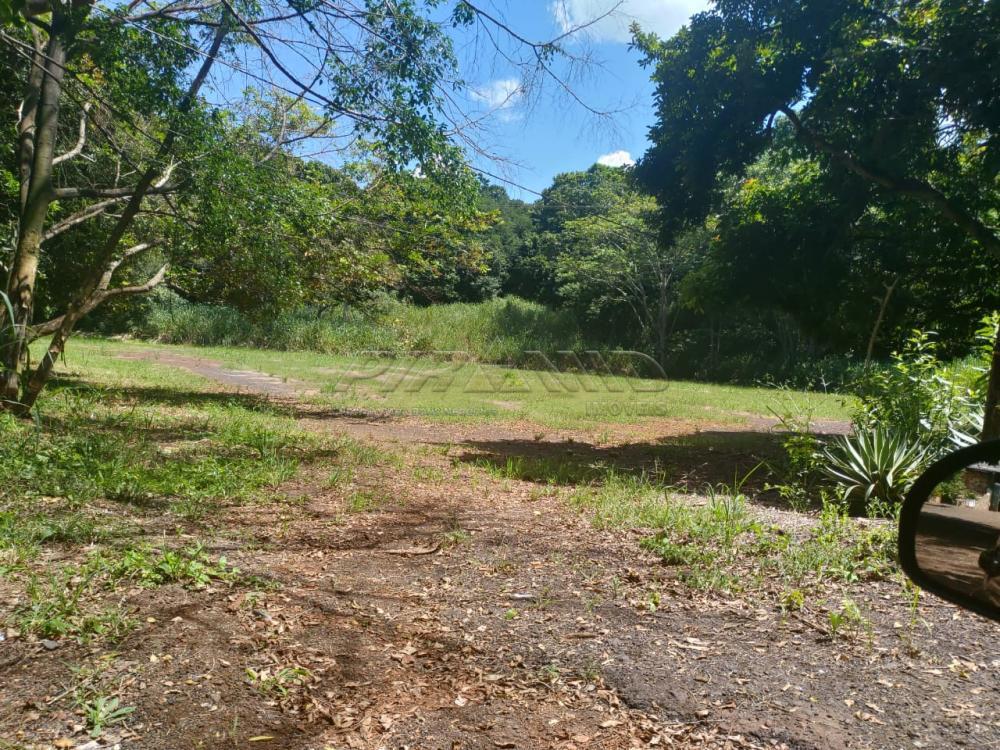 Comprar Rural / Chácara em Jardinópolis R$ 2.700.000,00 - Foto 16