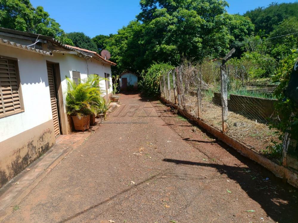 Comprar Rural / Chácara em Jardinópolis R$ 2.700.000,00 - Foto 17