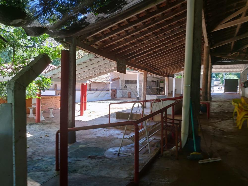 Comprar Rural / Chácara em Jardinópolis R$ 2.700.000,00 - Foto 24