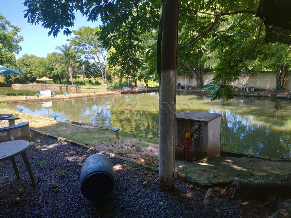 Comprar Rural / Chácara em Jardinópolis R$ 2.700.000,00 - Foto 27