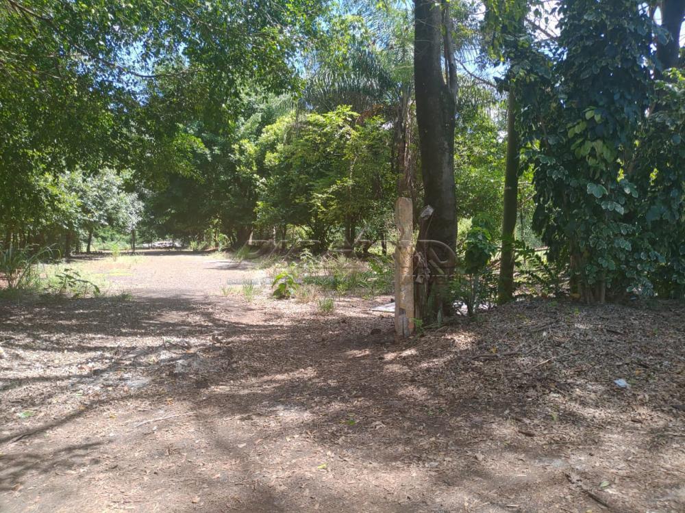 Comprar Rural / Chácara em Jardinópolis R$ 2.700.000,00 - Foto 33