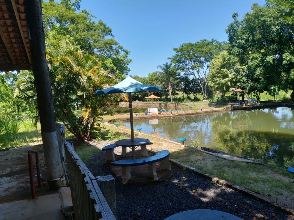 Comprar Rural / Chácara em Jardinópolis R$ 2.700.000,00 - Foto 37