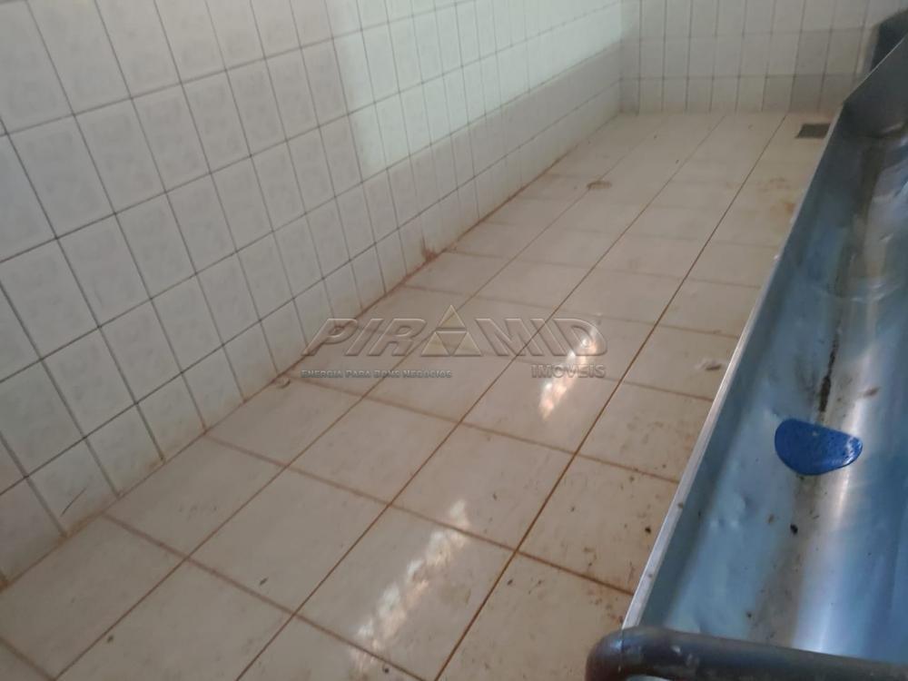Comprar Rural / Chácara em Jardinópolis R$ 2.700.000,00 - Foto 38