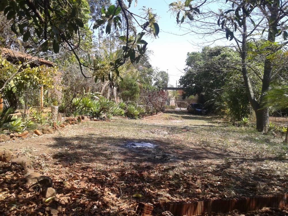 Comprar Rural / Chácara em Ribeirão Preto apenas R$ 500.000,00 - Foto 4