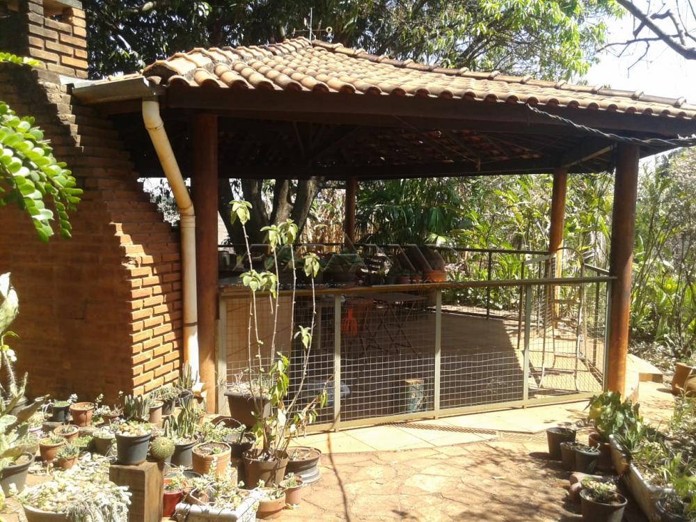 Comprar Rural / Chácara em Ribeirão Preto apenas R$ 500.000,00 - Foto 5