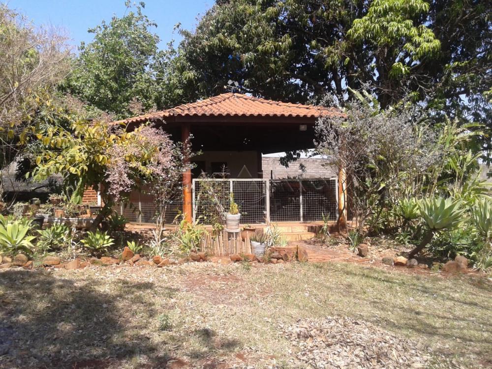Comprar Rural / Chácara em Ribeirão Preto apenas R$ 500.000,00 - Foto 6