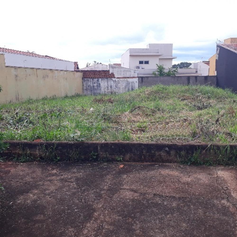 Comprar Terreno / Terreno em Ribeirão Preto R$ 175.000,00 - Foto 3