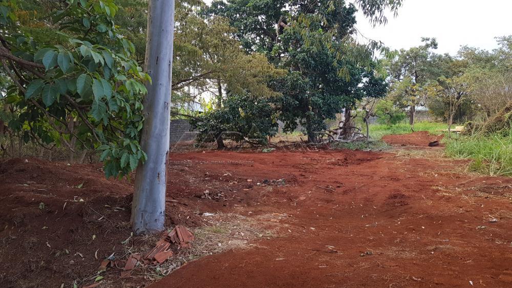 Alugar Terreno / Terreno em Ribeirão Preto apenas R$ 6.000,00 - Foto 9