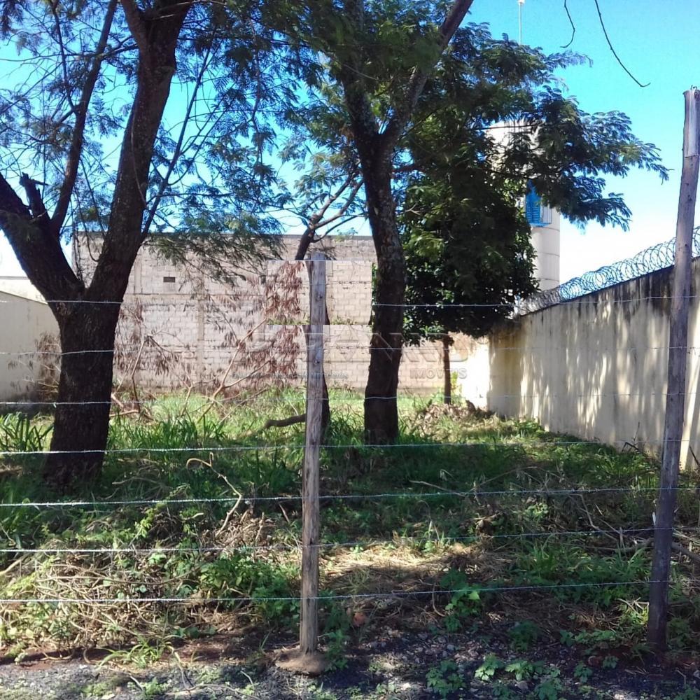 Alugar Terreno / Terreno em Ribeirão Preto R$ 1.000,00 - Foto 1
