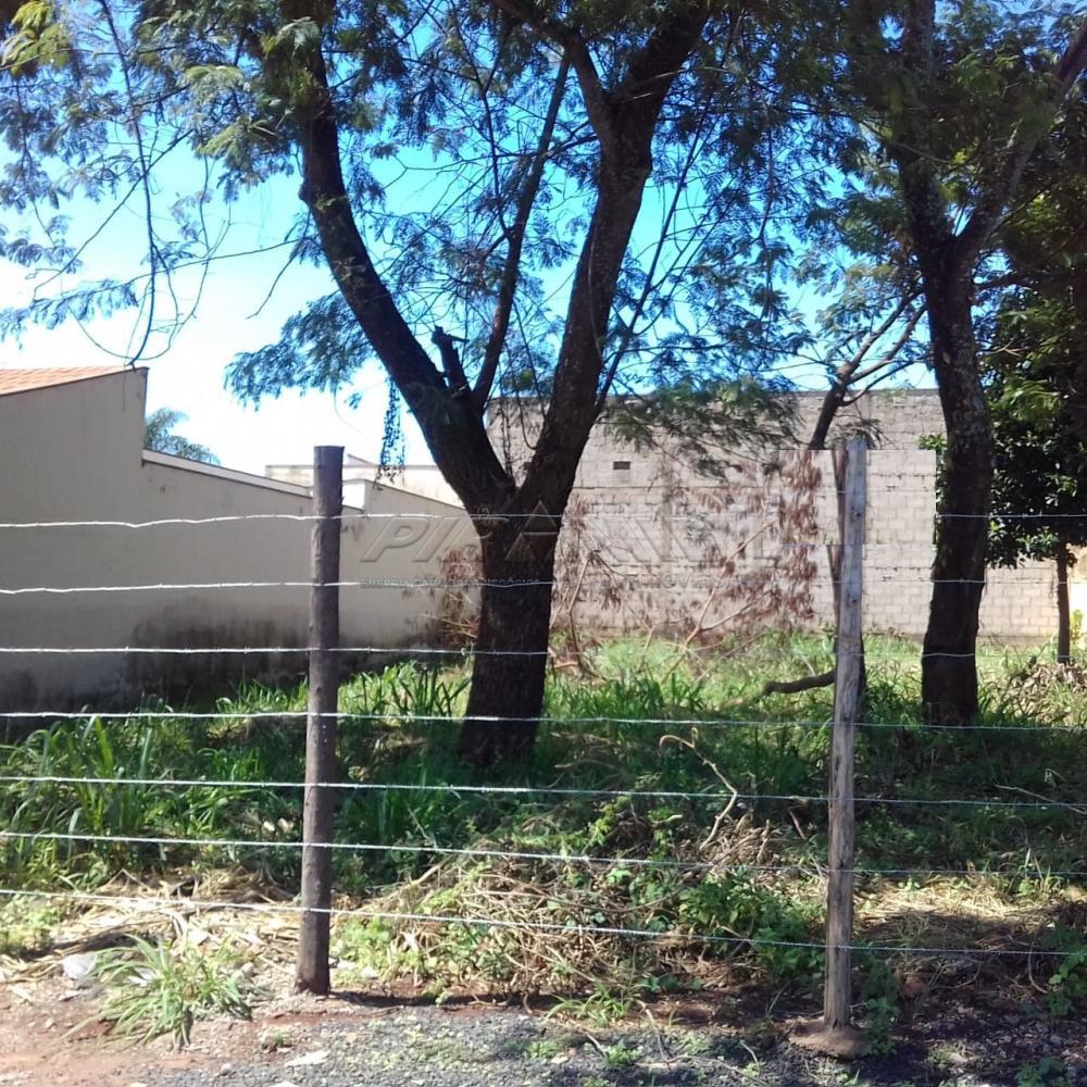 Alugar Terreno / Terreno em Ribeirão Preto R$ 1.000,00 - Foto 2