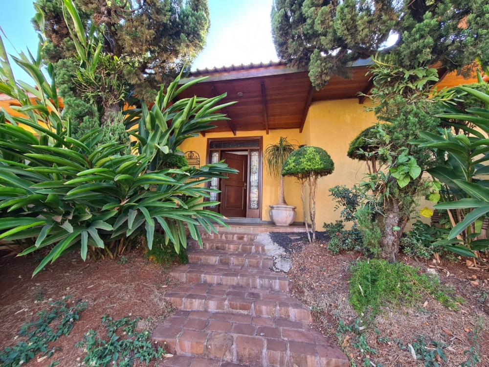 Alugar Casa / Padrão em Ribeirão Preto R$ 9.500,00 - Foto 4