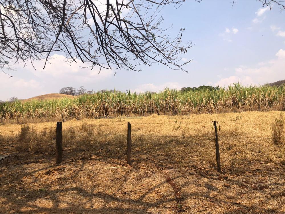 Comprar Rural / Sítio em Jardinópolis R$ 1.600.000,00 - Foto 23