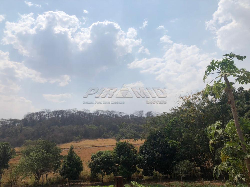 Comprar Rural / Sítio em Jardinópolis R$ 1.600.000,00 - Foto 27