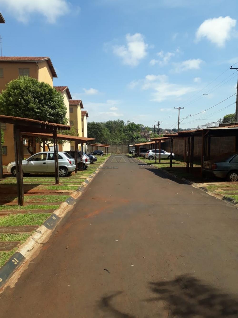 Comprar Apartamento / Padrão em Ribeirão Preto apenas R$ 106.000,00 - Foto 14
