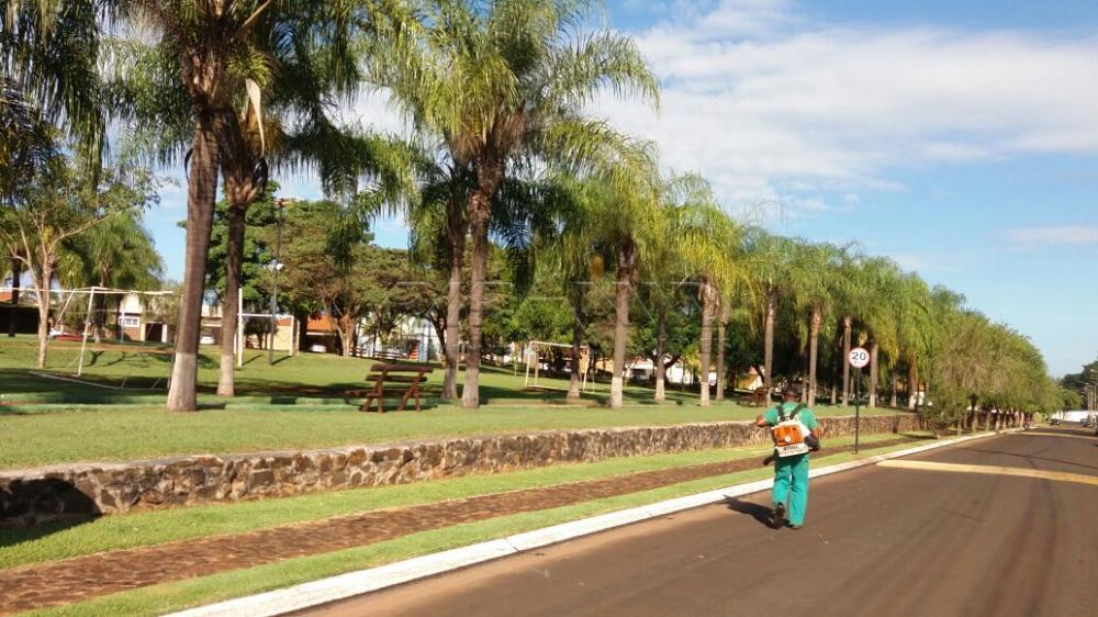 Comprar Casa / Condomínio em Jardinópolis apenas R$ 950.000,00 - Foto 30