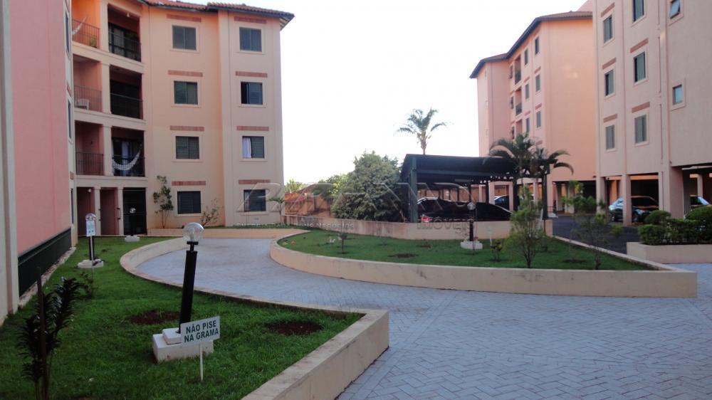 Apartamentos - Padr�o Ribeir�o Preto