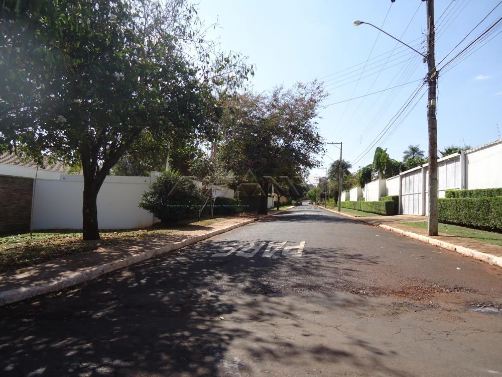 Alugar Casa / Condomínio em Bonfim Paulista apenas R$ 7.000,00 - Foto 35
