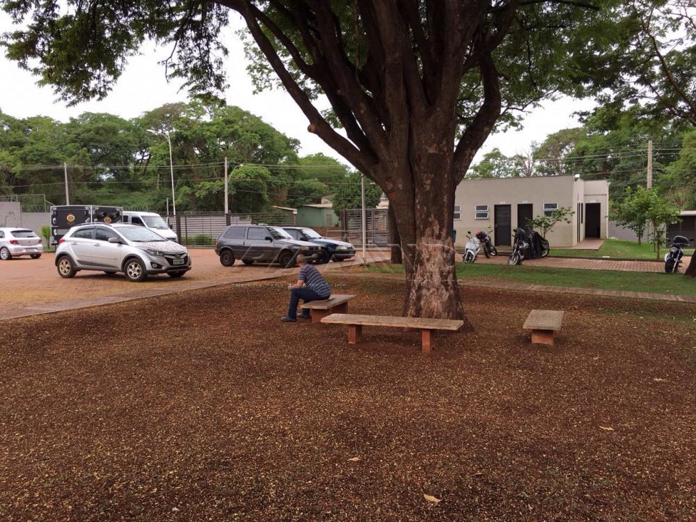 Alugar Apartamento / Padrão em Ribeirão Preto R$ 700,00 - Foto 26