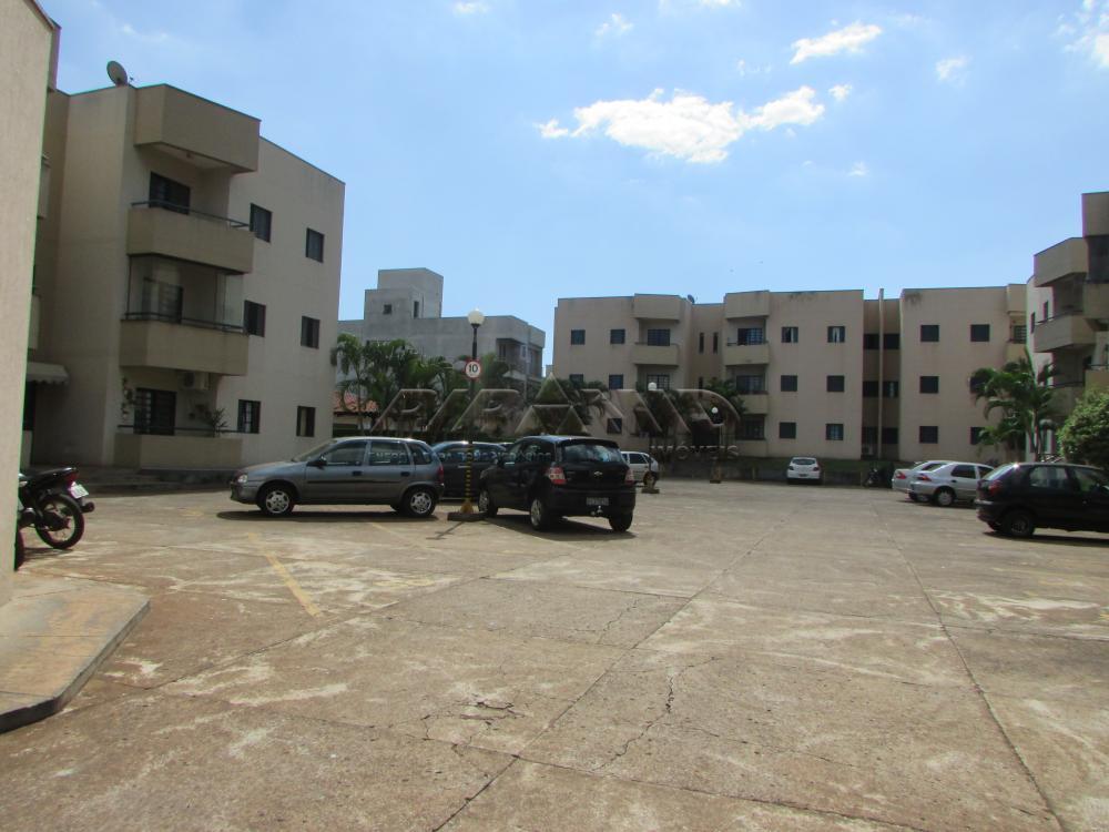 Alugar Apartamento / Padrão em Ribeirão Preto R$ 675,00 - Foto 18