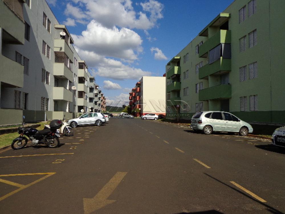 Alugar Apartamento / Padrão em Ribeirão Preto apenas R$ 750,00 - Foto 13