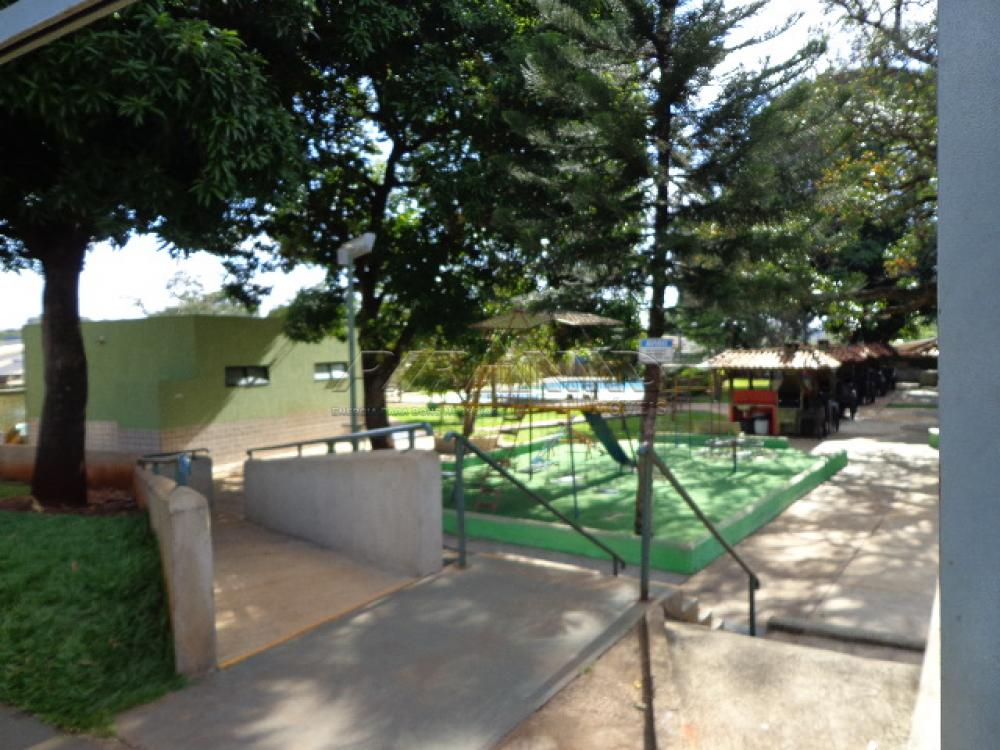 Alugar Apartamento / Padrão em Ribeirão Preto apenas R$ 750,00 - Foto 14