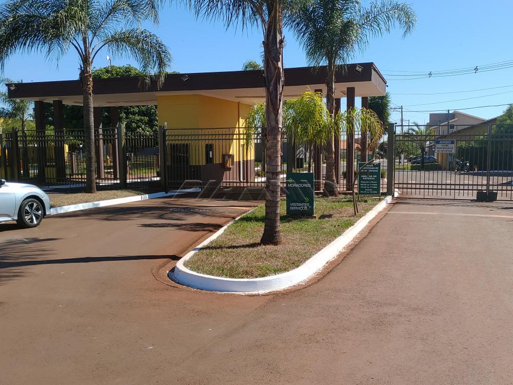 Comprar Casa / Condomínio em Cravinhos apenas R$ 2.500.000,00 - Foto 18