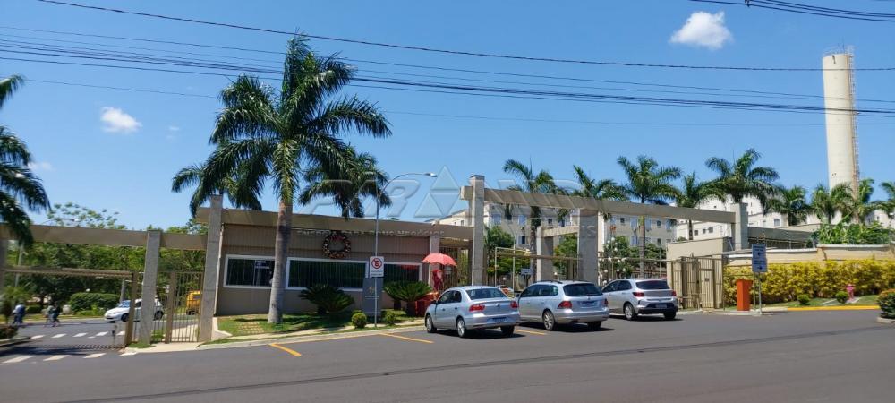 Alugar Apartamento / Padrão em Ribeirão Preto apenas R$ 500,00 - Foto 13