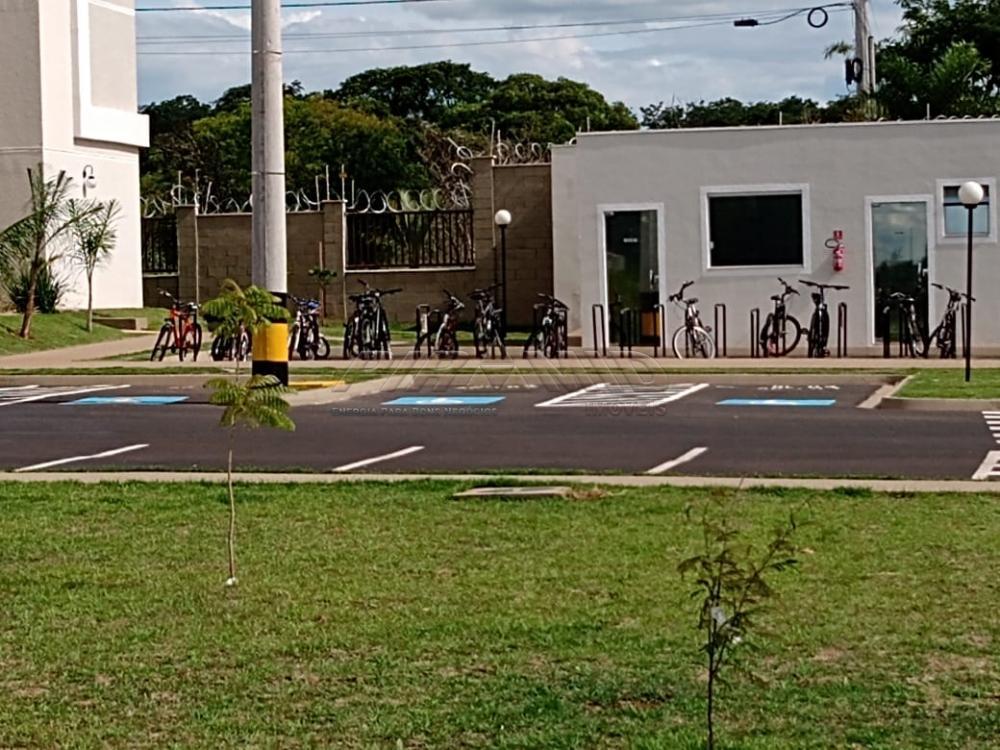 Alugar Apartamento / Padrão em Ribeirão Preto apenas R$ 600,00 - Foto 11
