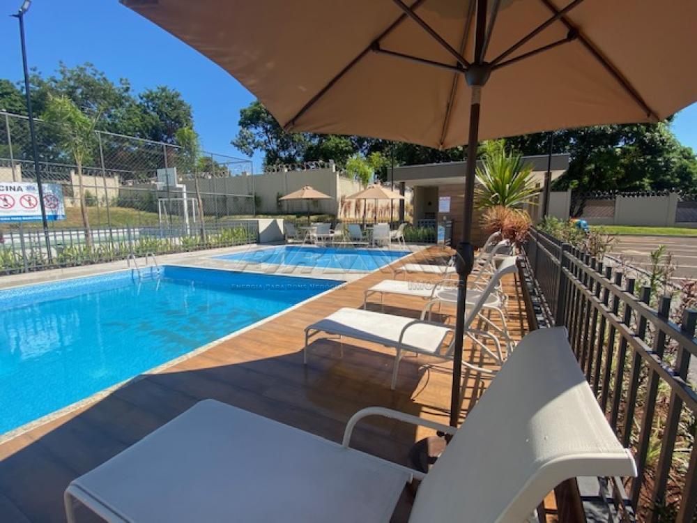 Alugar Apartamento / Padrão em Ribeirão Preto R$ 630,00 - Foto 29