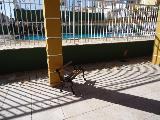 Alugar Casa / Condomínio em Bonfim Paulista R$ 3.500,00 - Foto 31