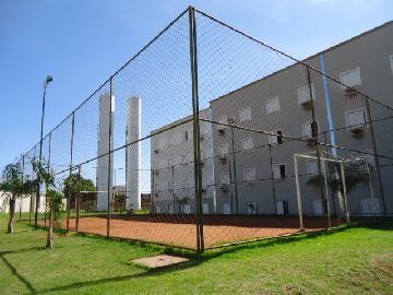Alugar Apartamento / Padrão em Ribeirão Preto R$ 500,00 - Foto 21