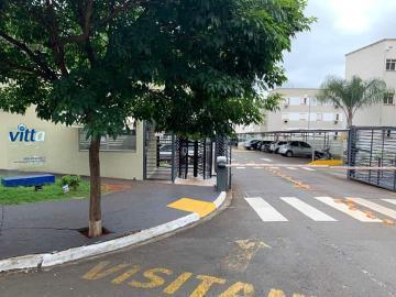 Alugar Apartamento / Padrão em Ribeirão Preto R$ 500,00 - Foto 14