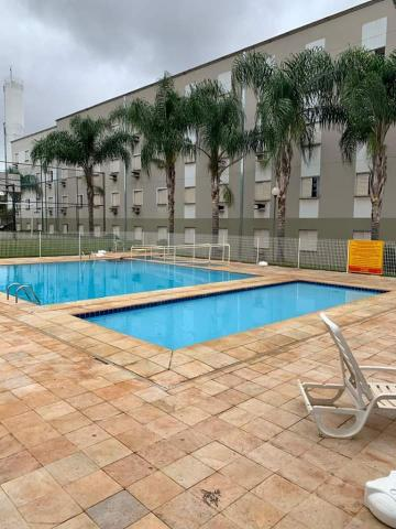 Alugar Apartamento / Padrão em Ribeirão Preto R$ 500,00 - Foto 19