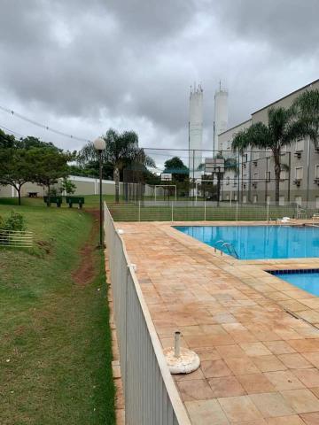 Alugar Apartamento / Padrão em Ribeirão Preto R$ 500,00 - Foto 20