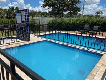 Alugar Apartamento / Padrão em Ribeirão Preto R$ 600,00 - Foto 18