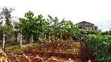 Jardinopolis Centro Casa Venda R$1.500.000,00 Condominio R$2.000,00 2 Dormitorios 6 Vagas Area do terreno 4200.00m2 Area construida 500.00m2