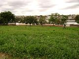 Jaboticabal Sorocabano Terreno Venda R$1.200.000,00  Area do terreno 5716.00m2