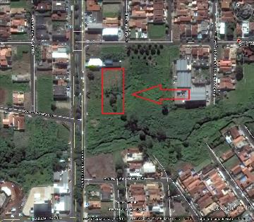Alugar Terreno / Terreno em Ribeirão Preto. apenas R$ 1.000,00