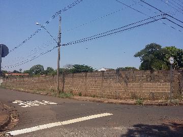Terreno / Terreno em Ribeirão Preto Alugar por R$3.000,00