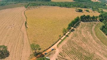 Alugar Rural / Sítio em Santo Antônio da Alegria. apenas R$ 950.000,00