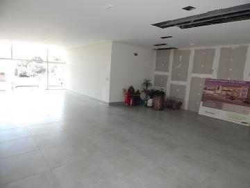 Comercial / Sala em Ribeirão Preto Alugar por R$7.800,00