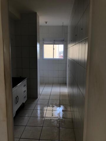 Alugar Apartamento / Padrão em Ribeirão Preto. apenas R$ 500,00