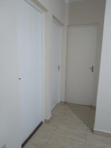 Alugar Apartamento / Padrão em Ribeirão Preto R$ 500,00 - Foto 1
