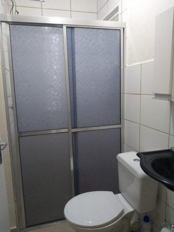 Alugar Apartamento / Padrão em Ribeirão Preto R$ 500,00 - Foto 5
