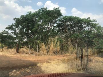 Comprar Rural / Sítio em Jardinópolis R$ 1.600.000,00 - Foto 5