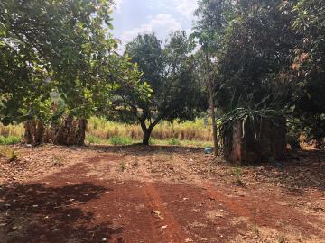 Comprar Rural / Sítio em Jardinópolis R$ 1.600.000,00 - Foto 8