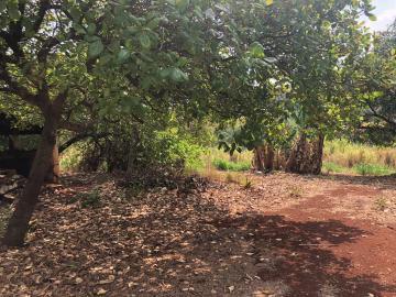 Comprar Rural / Sítio em Jardinópolis R$ 1.600.000,00 - Foto 9